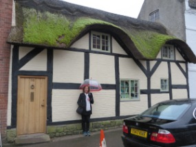Another Thatch roof